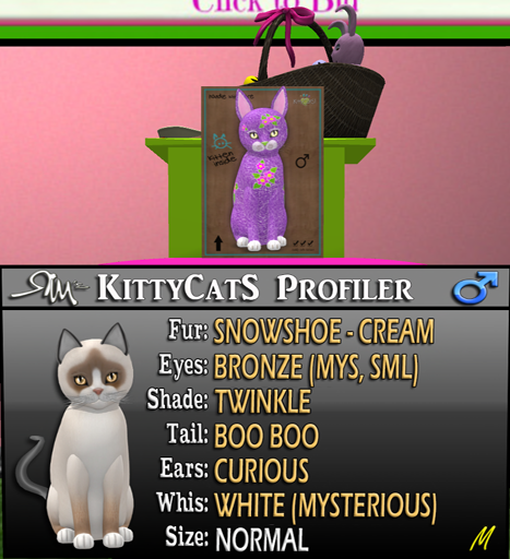 [Image: easterkitty.png]